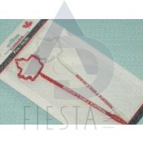 NIAGARA FALLS FLAG PEN 2 PACK