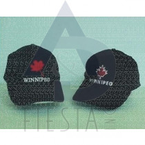 WINNIPEG BRUSHED COTTON CAP 4 ASSORTED