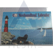 NEWFOUNDLAND LABRADOR POSTCARD LIGHTHOUSE