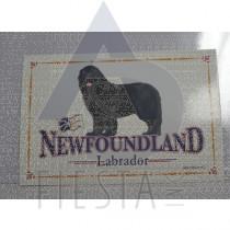 NEWFOUNDLAND LABRADOR POSTCARD DOG