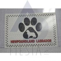 NEWFOUNDLAND LABRADOR POSTCARD PAW PRINT