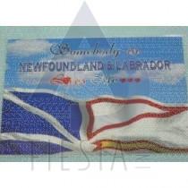 NEWFOUNDLAND LABRADOR PLACEMAT FLAG DESIGN
