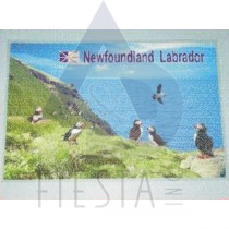 NEWFOUNDLAND LABRADOR PLACEMAT PUFFIN WITH WATER