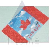 CANADA POSTCARD CANADA FLAG WITH BIRD