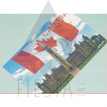 CANADA POSTCARD WITH THE PARLIAMENT BULDING