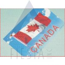 CANADA POSTCARD WITH CANADA WAVY FLAG