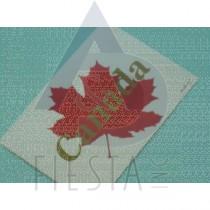 CANADA POSTCARD WITH CANADA MAPLE LEAF
